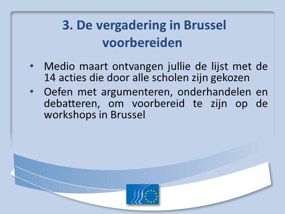 3. De vergadering in Brussel voorbereiden