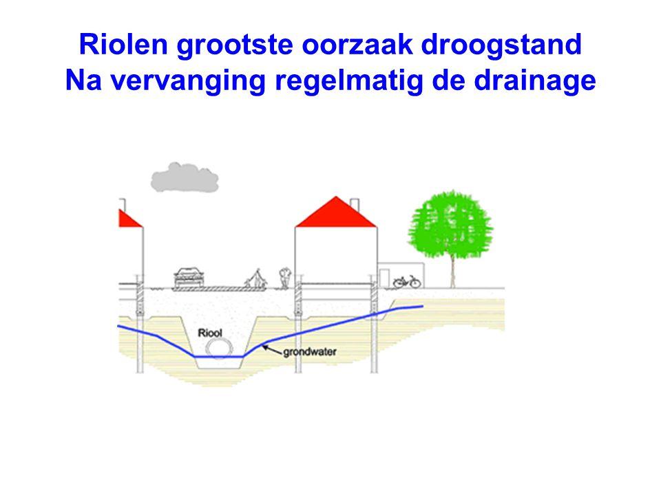 Riolen grootste oorzaak droogstand Na vervanging regelmatig de drainage