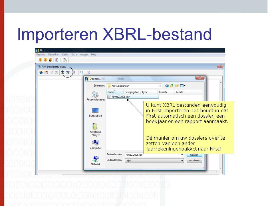 Importeren XBRL-bestand