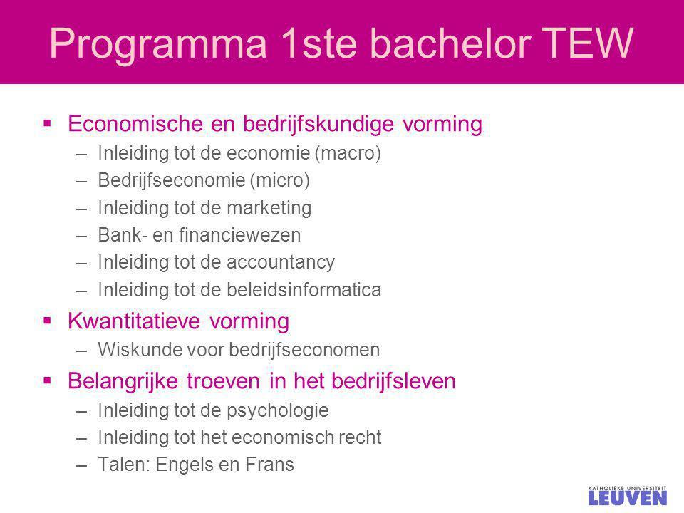 Programma 1ste bachelor TEW