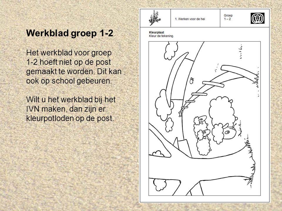 Werkblad groep 1-2