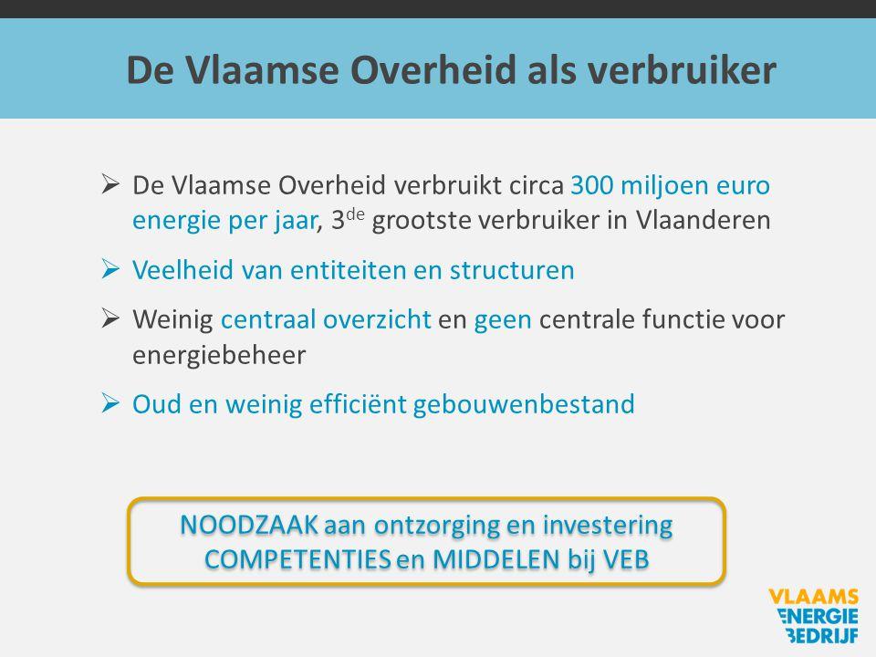 De Vlaamse Overheid als verbruiker