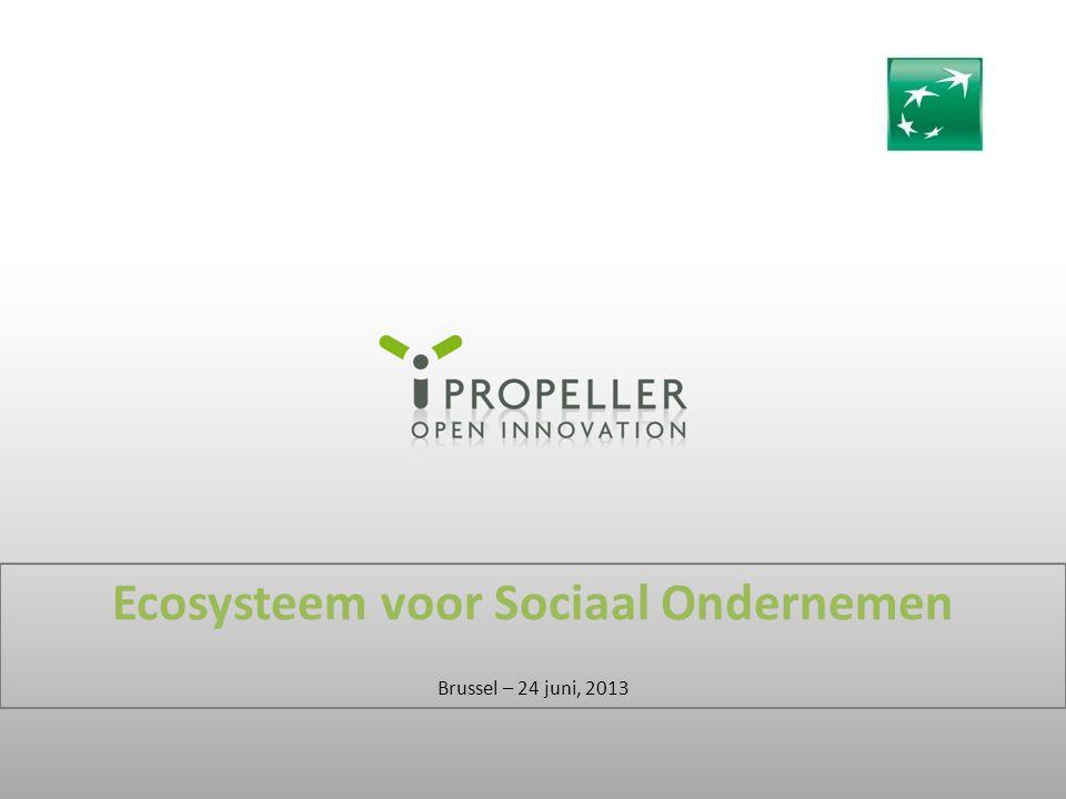 Ecosysteem voor Sociaal Ondernemen