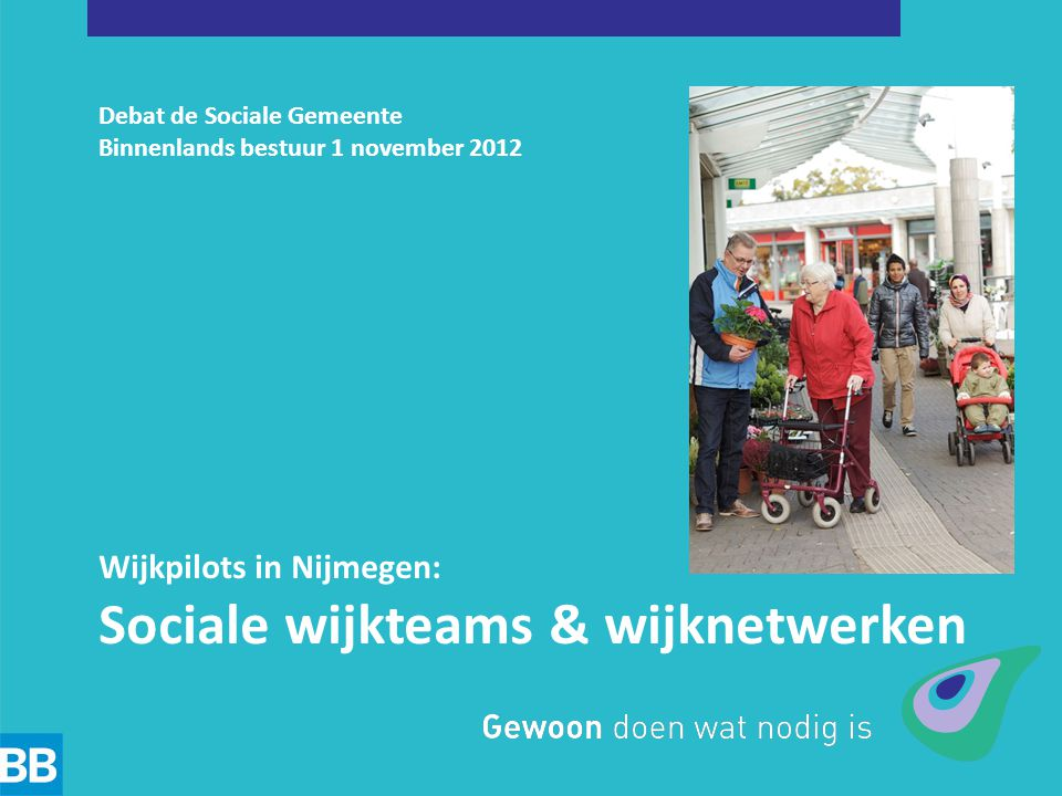 Sociale wijkteams & wijknetwerken