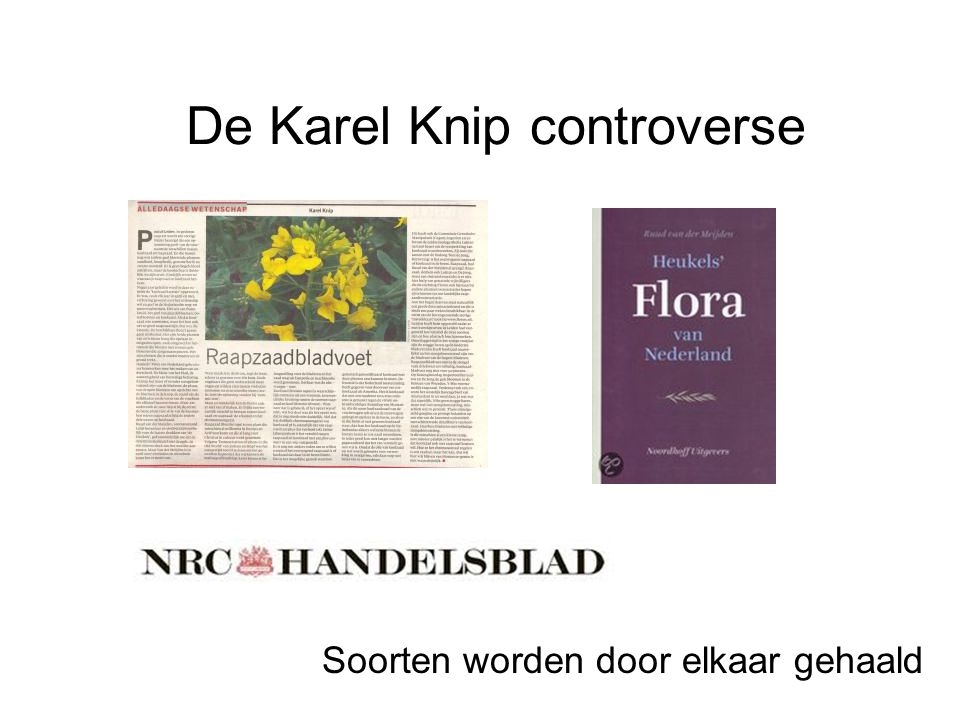 De Karel Knip controverse