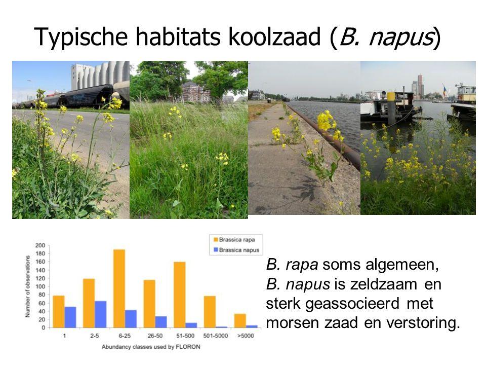Typische habitats koolzaad (B. napus)