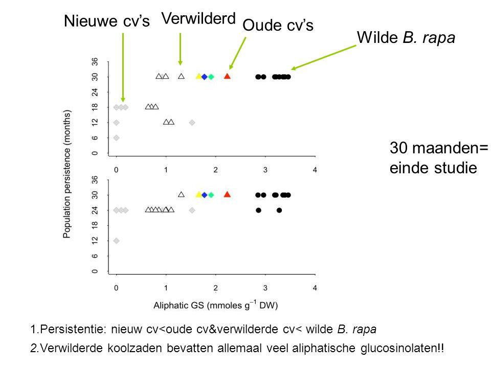 Verwilderd Nieuwe cv's Oude cv's Wilde B. rapa 30 maanden=
