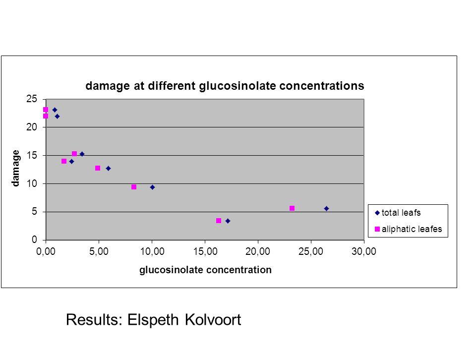 Results: Elspeth Kolvoort