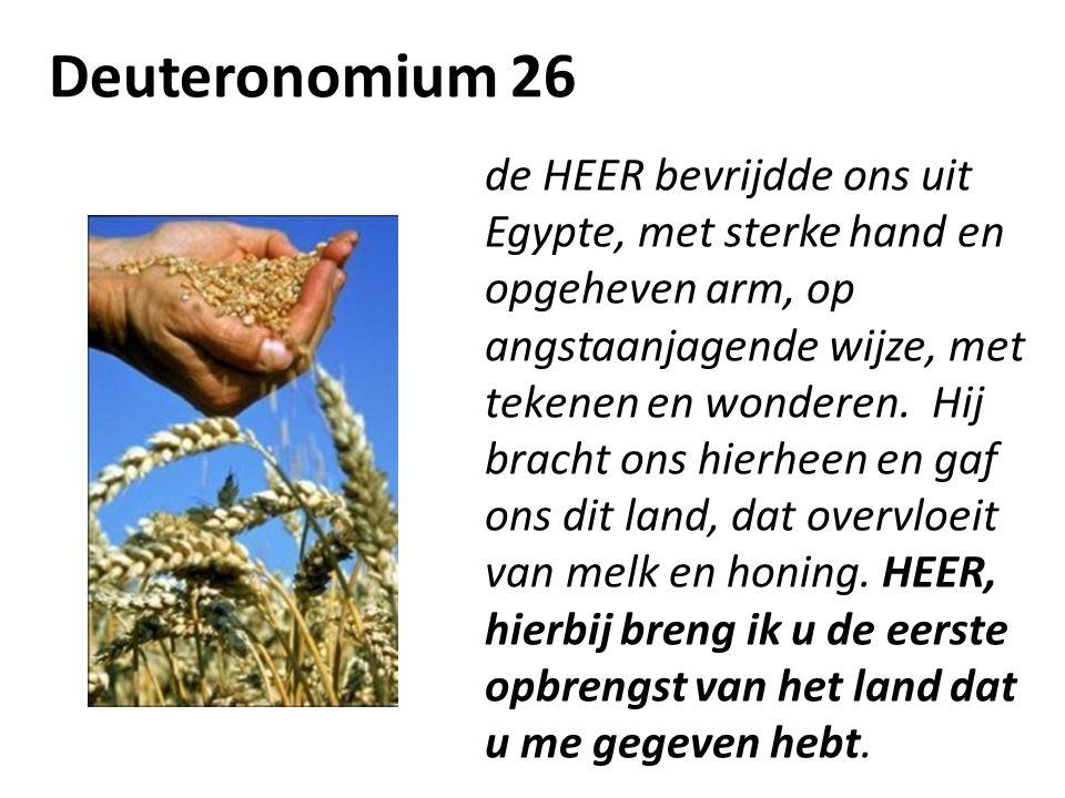 Deuteronomium 26