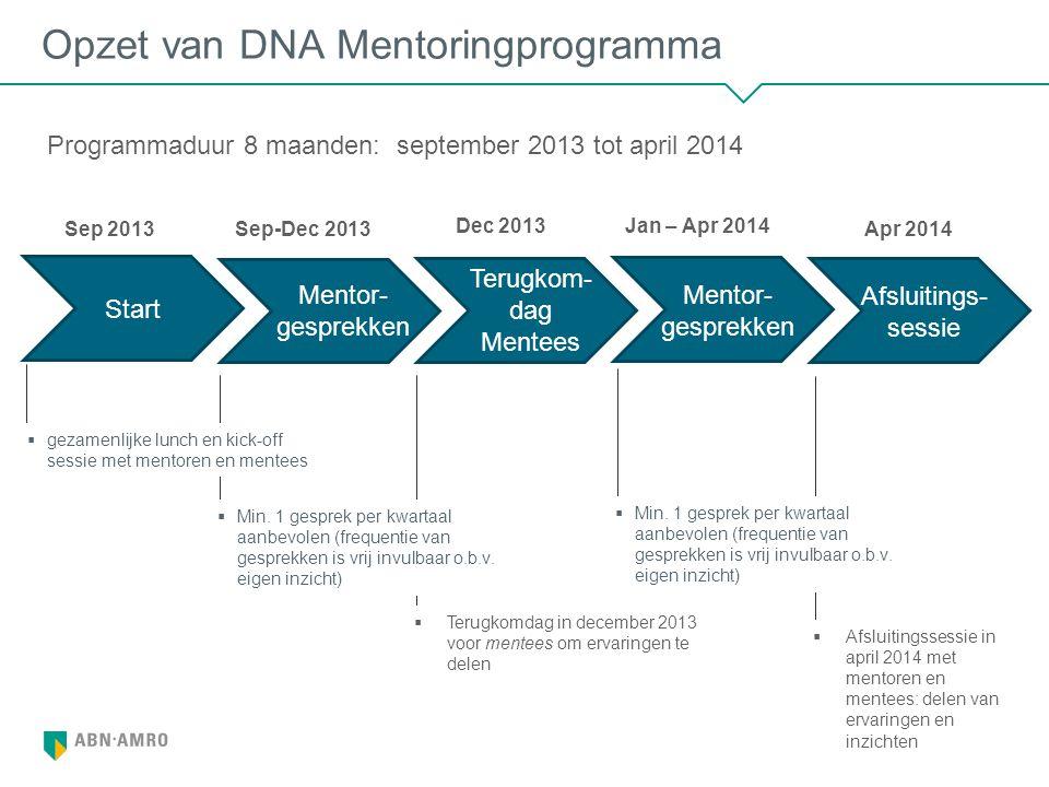 Opzet van DNA Mentoringprogramma
