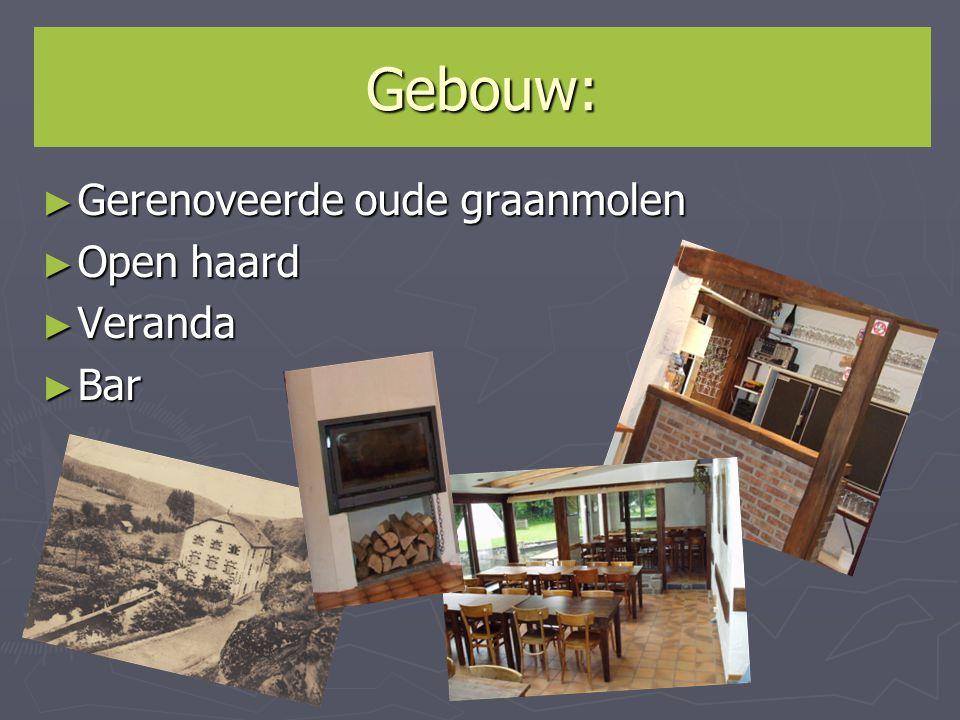 Gebouw: Gerenoveerde oude graanmolen Open haard Veranda Bar