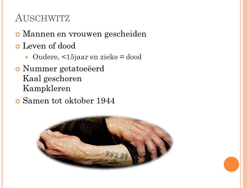 Auschwitz Mannen en vrouwen gescheiden Leven of dood