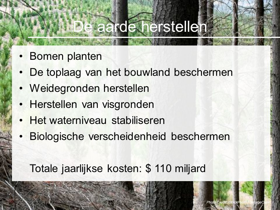 De aarde herstellen Bomen planten