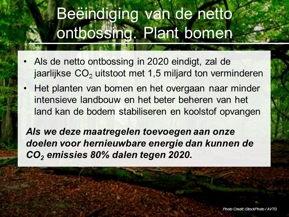 Beëindiging van de netto ontbossing. Plant bomen