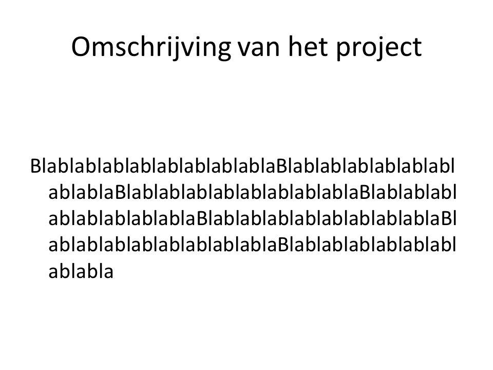 Omschrijving van het project