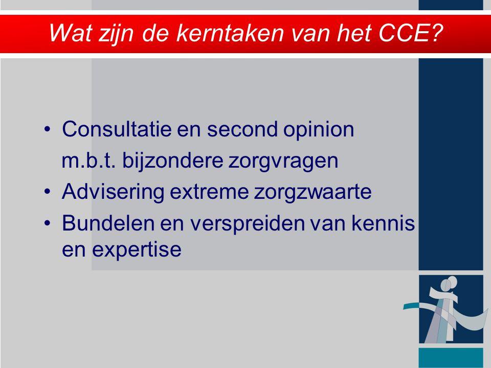 Wat zijn de kerntaken van het CCE