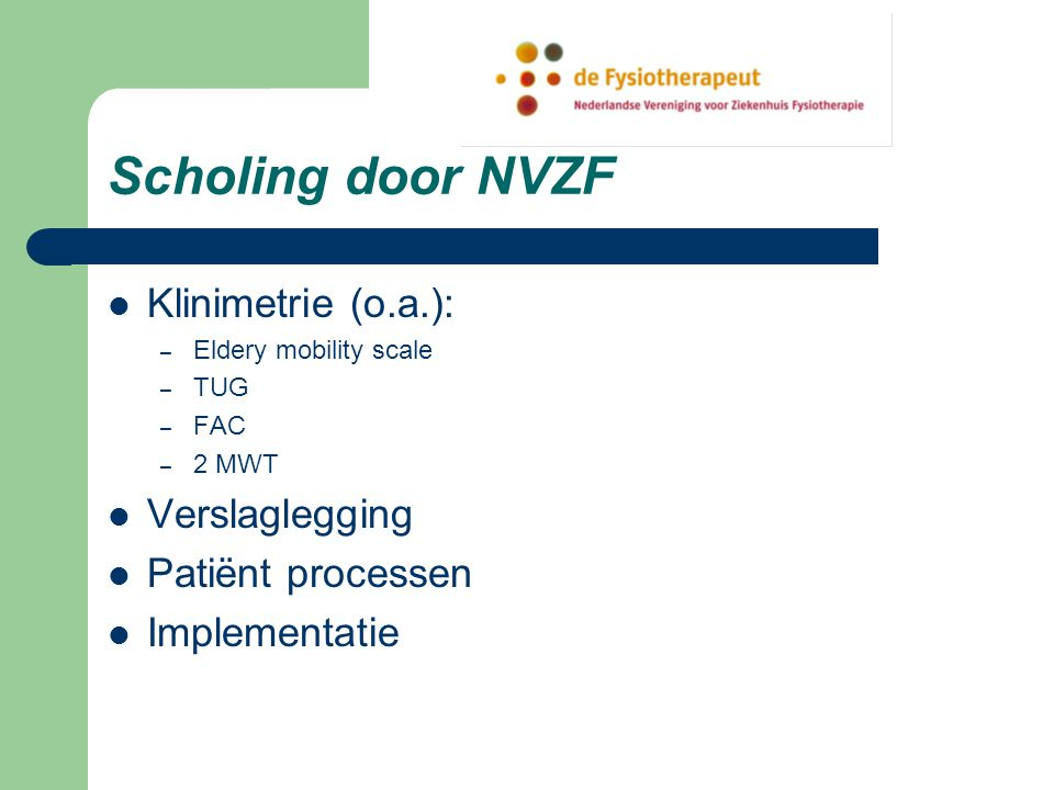Scholing door NVZF Klinimetrie (o.a.): Verslaglegging