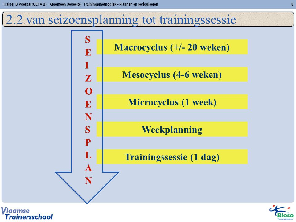 Macrocyclus (+/- 20 weken) Trainingssessie (1 dag)