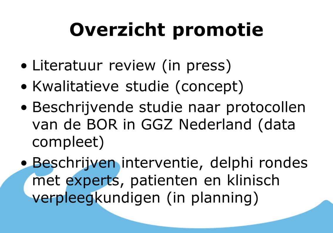 Overzicht promotie Literatuur review (in press)
