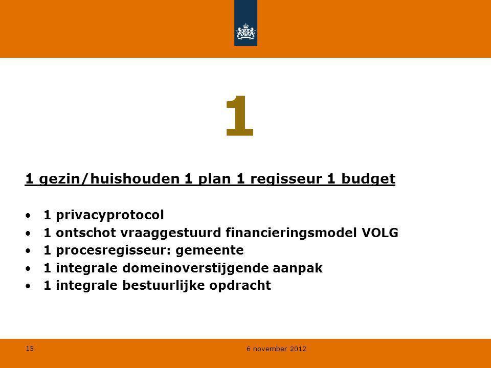 1 1 gezin/huishouden 1 plan 1 regisseur 1 budget 1 privacyprotocol