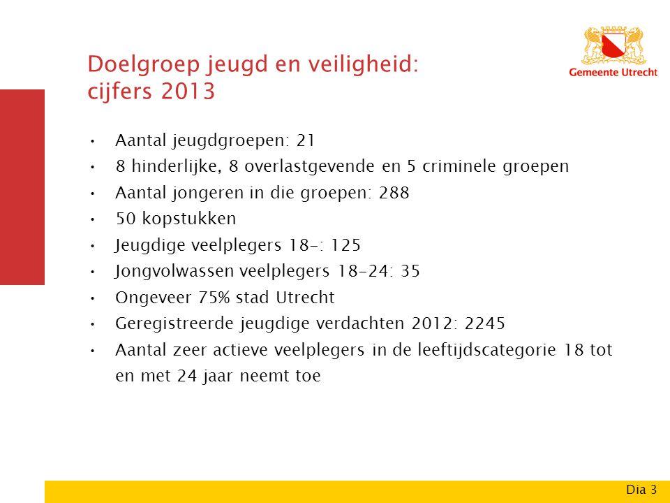 Doelgroep jeugd en veiligheid: cijfers 2013