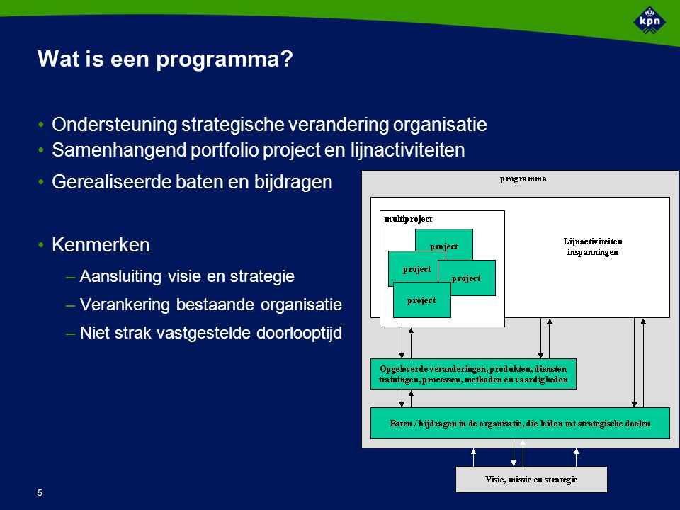 Wat is Programma Management