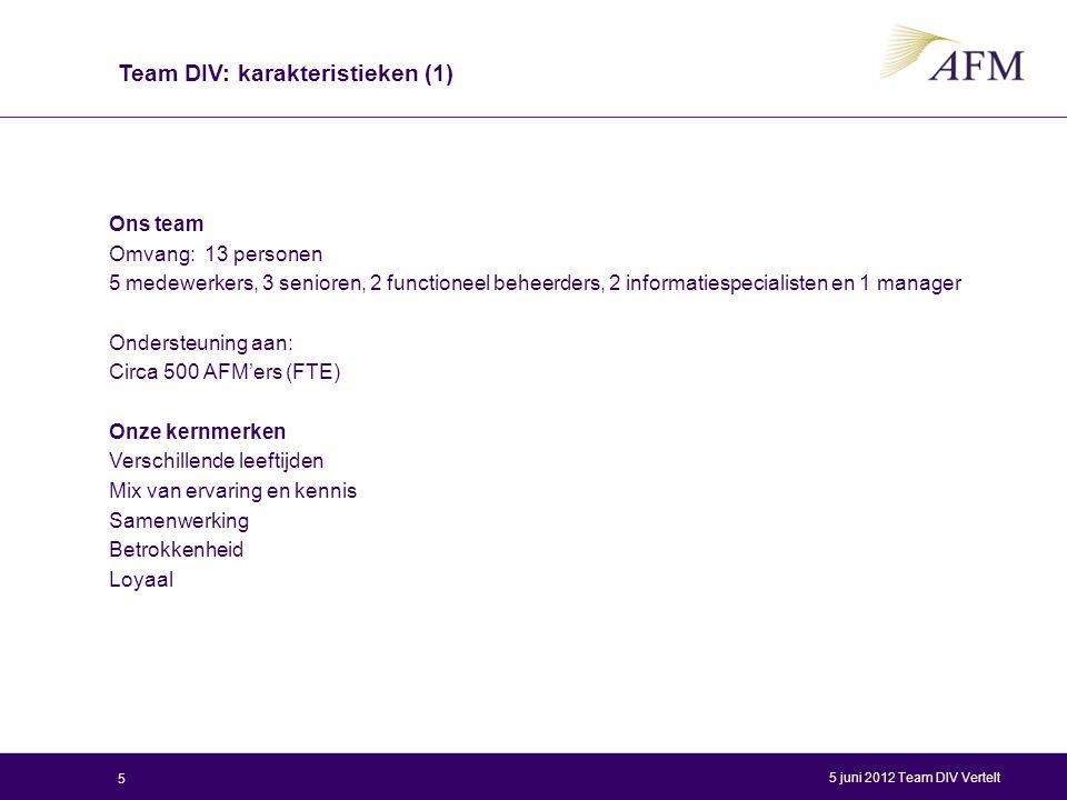 Team DIV: karakteristieken (1)