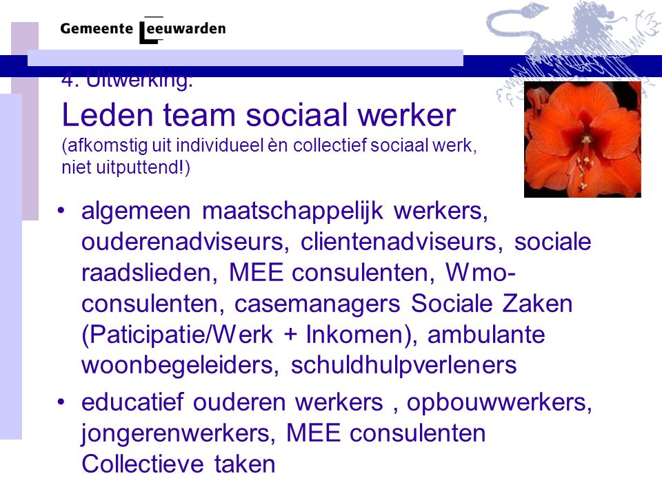 4. Uitwerking: Leden team sociaal werker (afkomstig uit individueel èn collectief sociaal werk, niet uitputtend!)