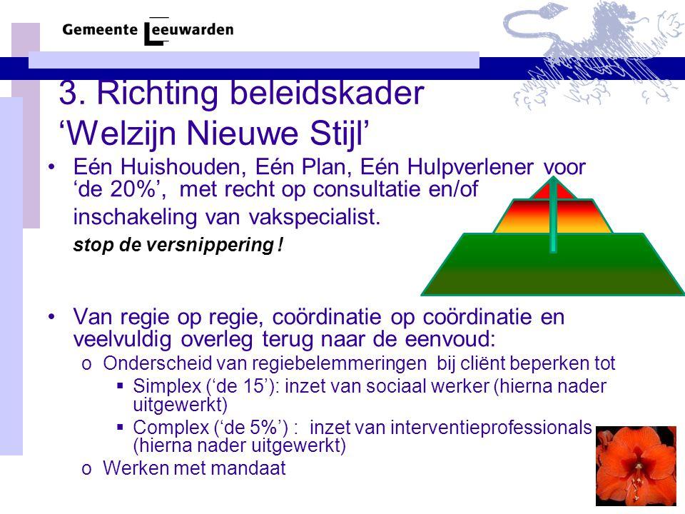 3. Richting beleidskader 'Welzijn Nieuwe Stijl'