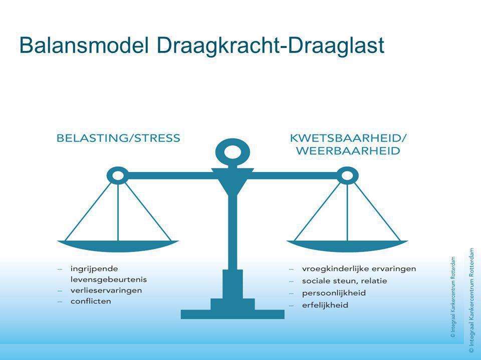 Balansmodel Draagkracht-Draaglast