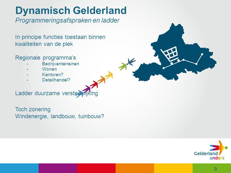 Dynamisch Gelderland Programmeringsafspraken en ladder