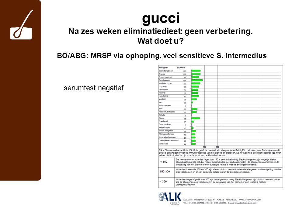 gucci Na zes weken eliminatiedieet: geen verbetering. Wat doet u