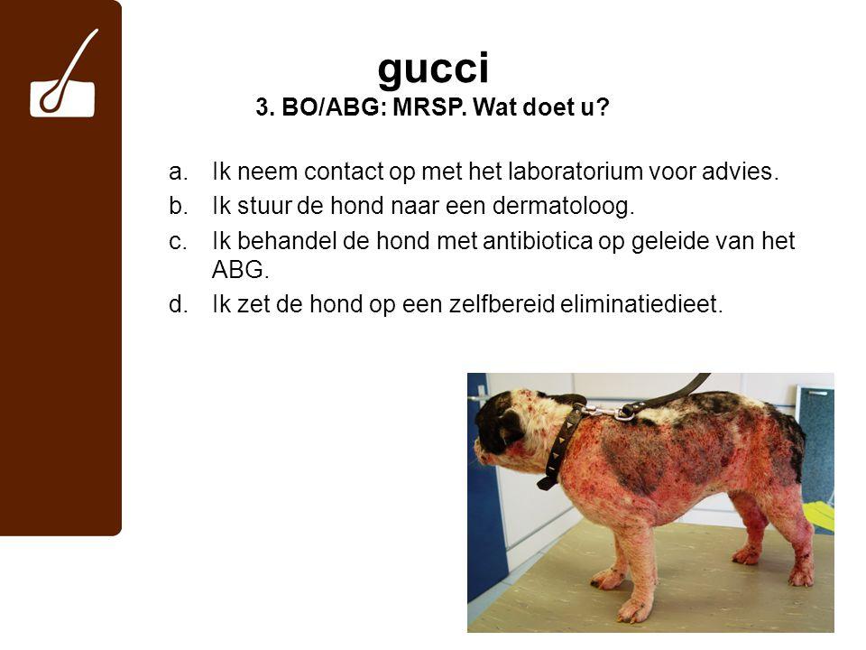 gucci 3. BO/ABG: MRSP. Wat doet u