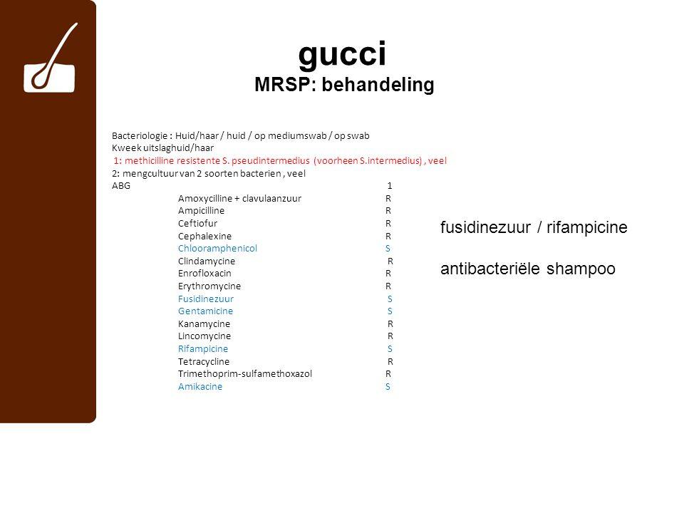 gucci MRSP: behandeling