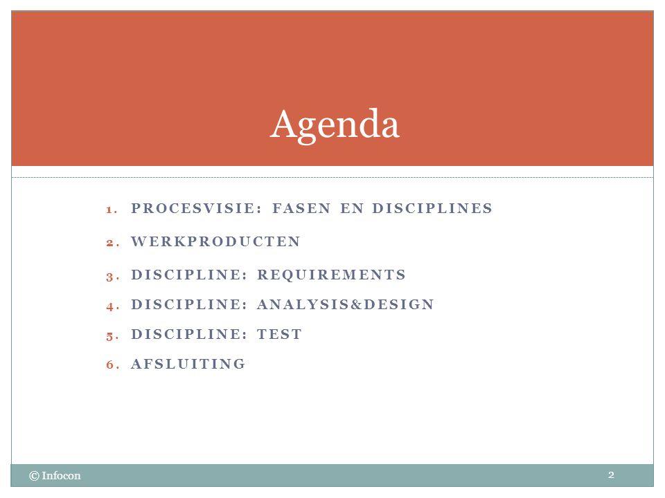 Agenda Procesvisie: fasen en disciplines WerkpRoducten