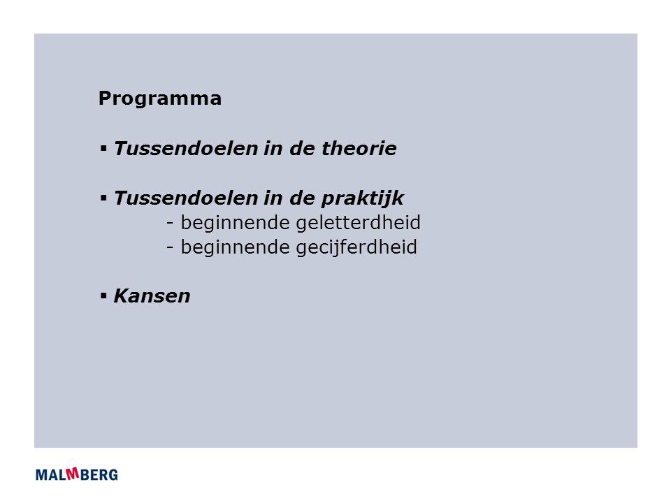 Programma Tussendoelen in de theorie. Tussendoelen in de praktijk. - beginnende geletterdheid. - beginnende gecijferdheid.