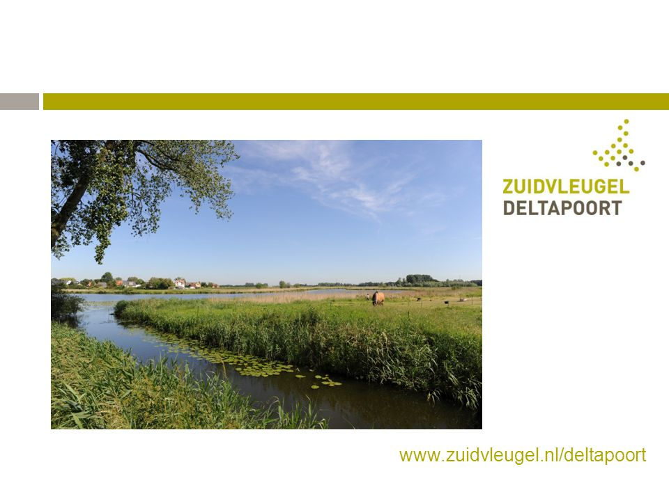 www.zuidvleugel.nl/deltapoort
