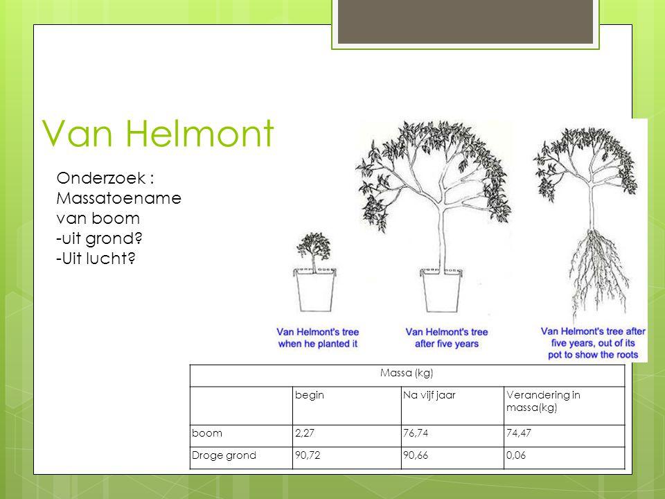 Van Helmont Onderzoek : Massatoename van boom -uit grond -Uit lucht