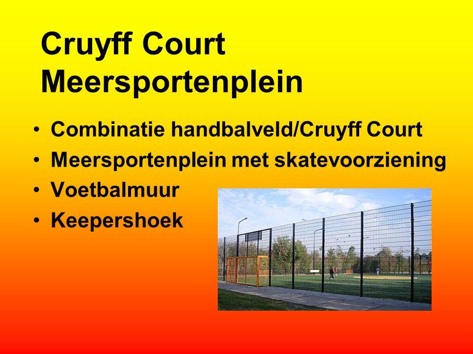 Cruyff Court Meersportenplein