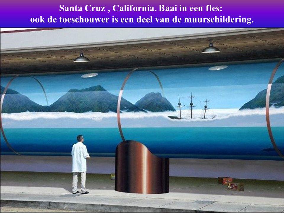 Santa Cruz , California. Baai in een fles: