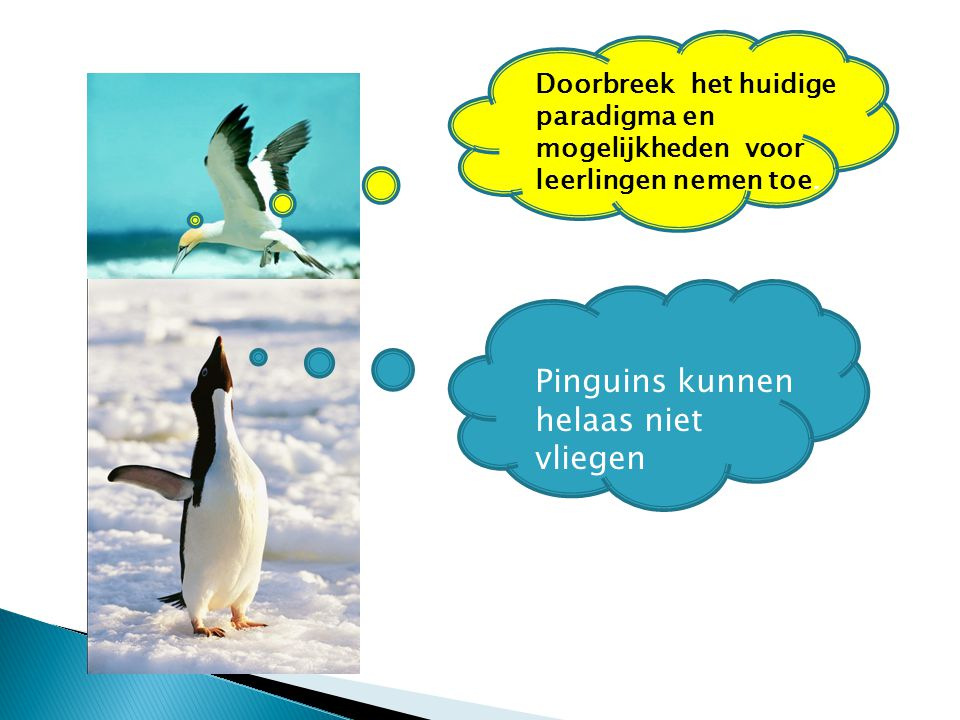 Pinguins kunnen helaas niet vliegen