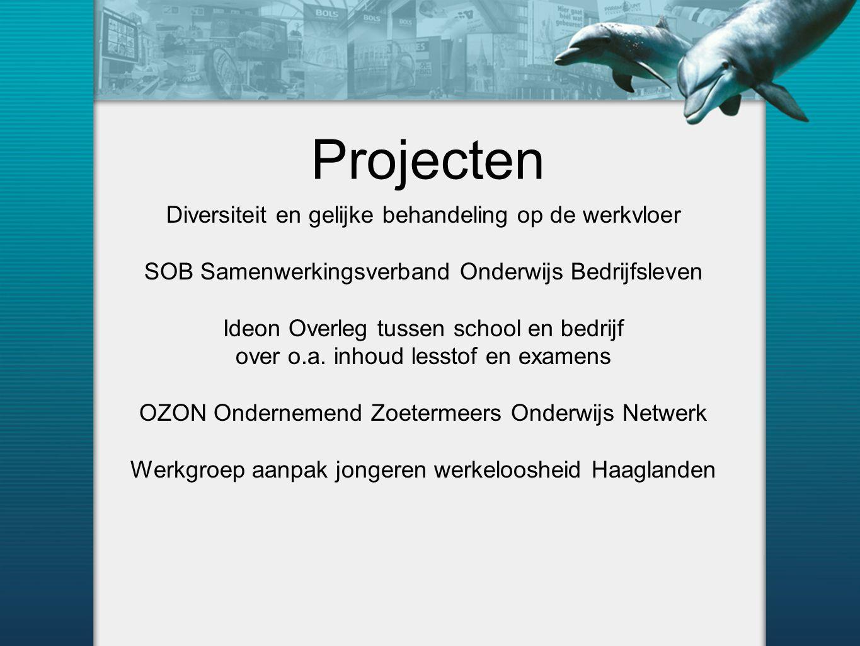 Projecten Diversiteit en gelijke behandeling op de werkvloer