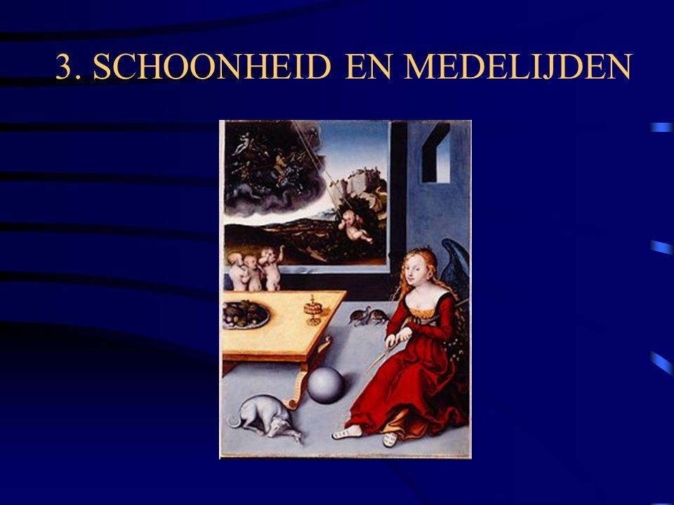 3. SCHOONHEID EN MEDELIJDEN
