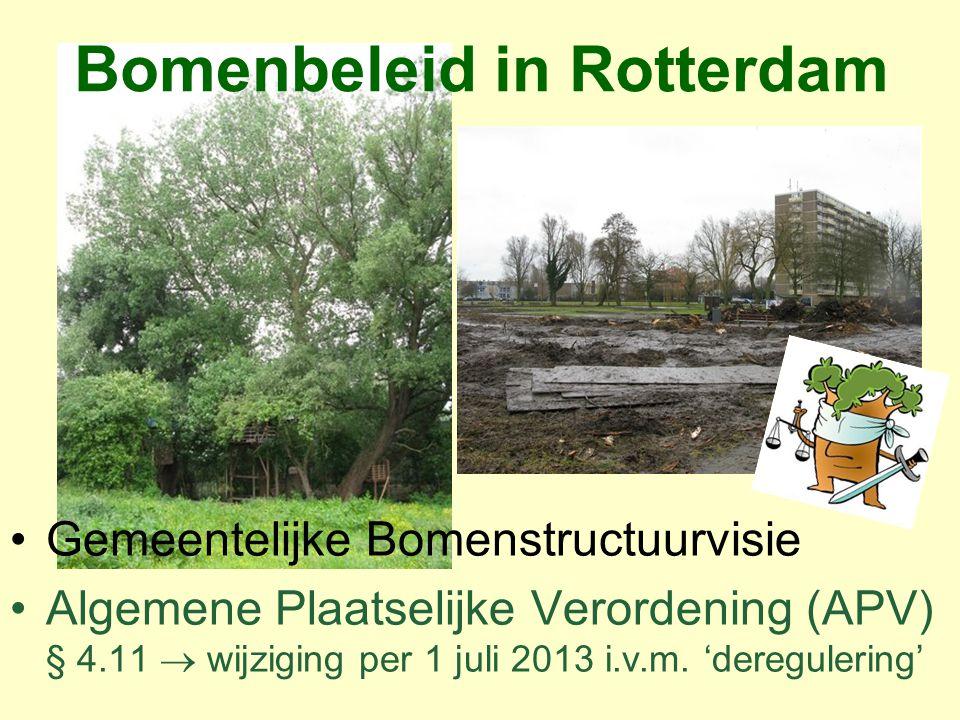 Bomenbeleid in Rotterdam
