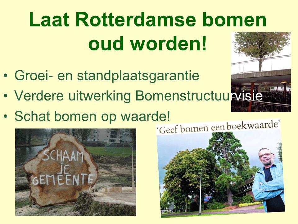 Laat Rotterdamse bomen oud worden!