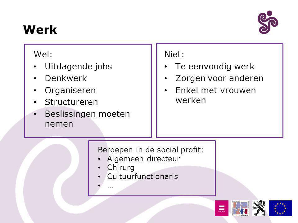 Werk Wel: Uitdagende jobs Denkwerk Organiseren Structureren
