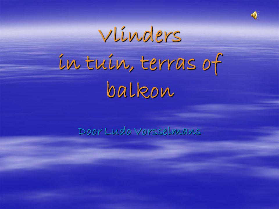 Vlinders in tuin, terras of balkon