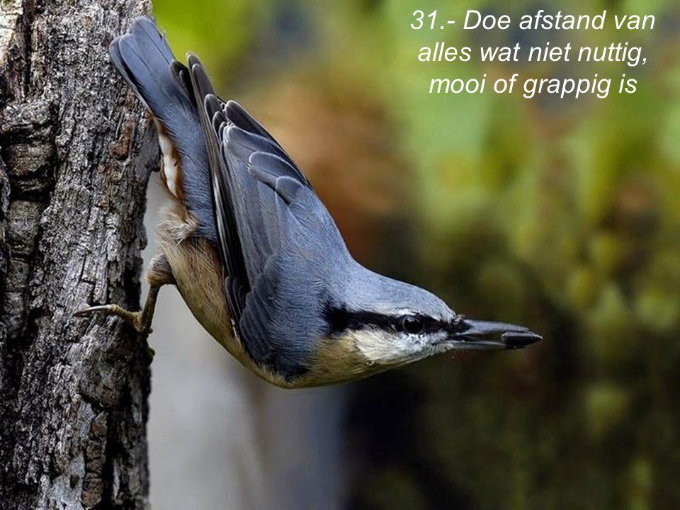 31.- Doe afstand van alles wat niet nuttig, mooi of grappig is