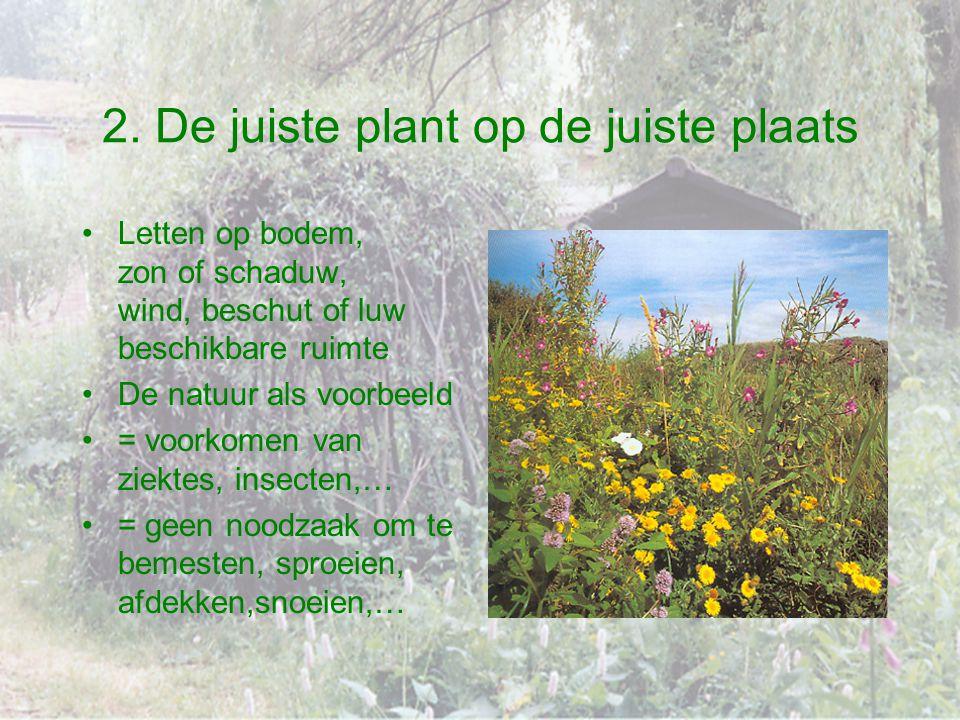 2. De juiste plant op de juiste plaats