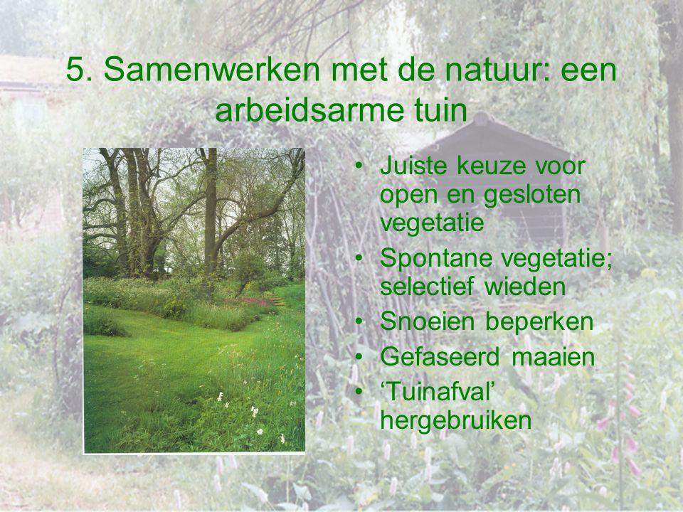 5. Samenwerken met de natuur: een arbeidsarme tuin